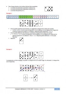dominos concours IFSI