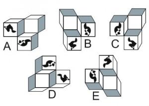 test psychotechnique concours IFSI 3D 5